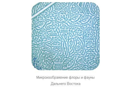 Микроэлементы флоры и фауны на купюре 2000 рублей