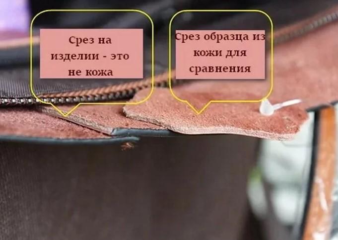 Сравнение среза натуральной кожи и искусственной
