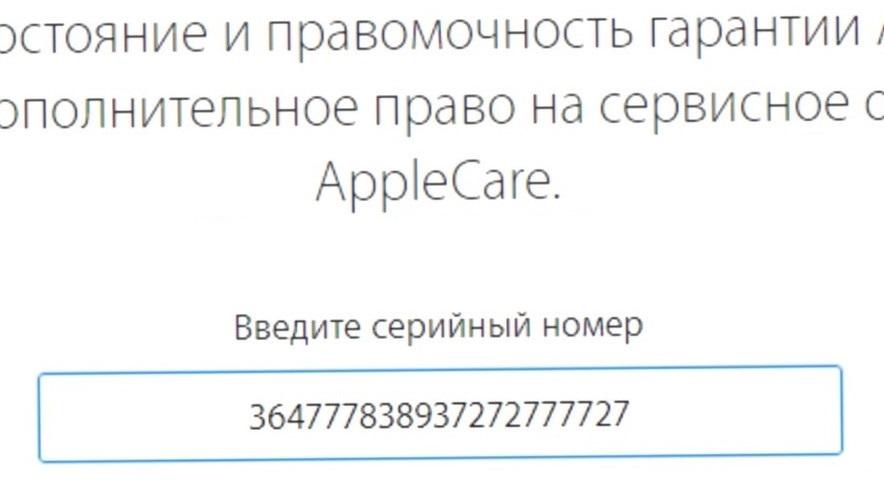 Проверка гарантии на сайте