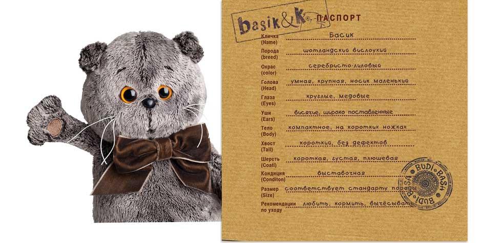 Басик с паспортом