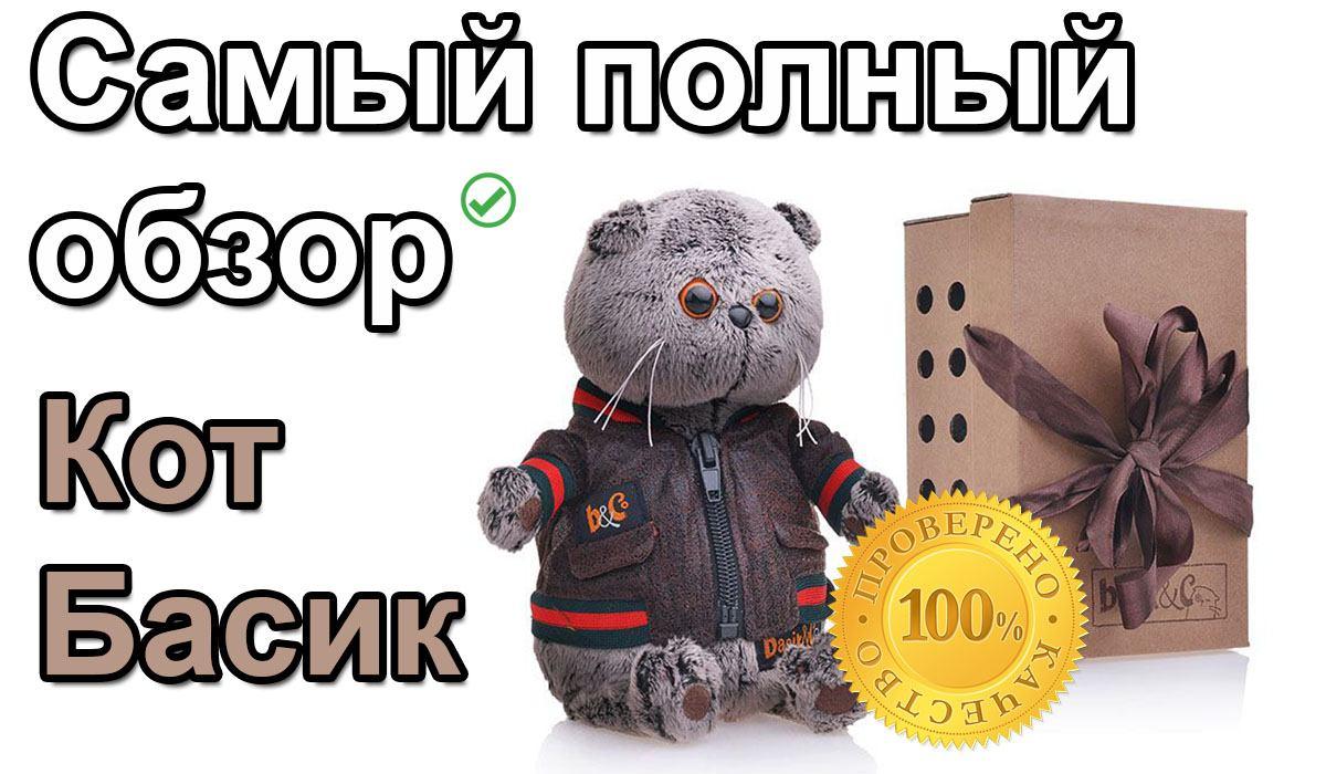 Кот Басик